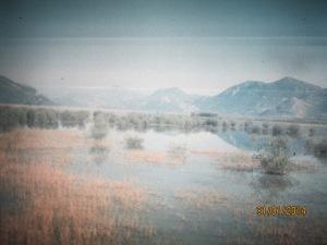 Jukari-projekti 051